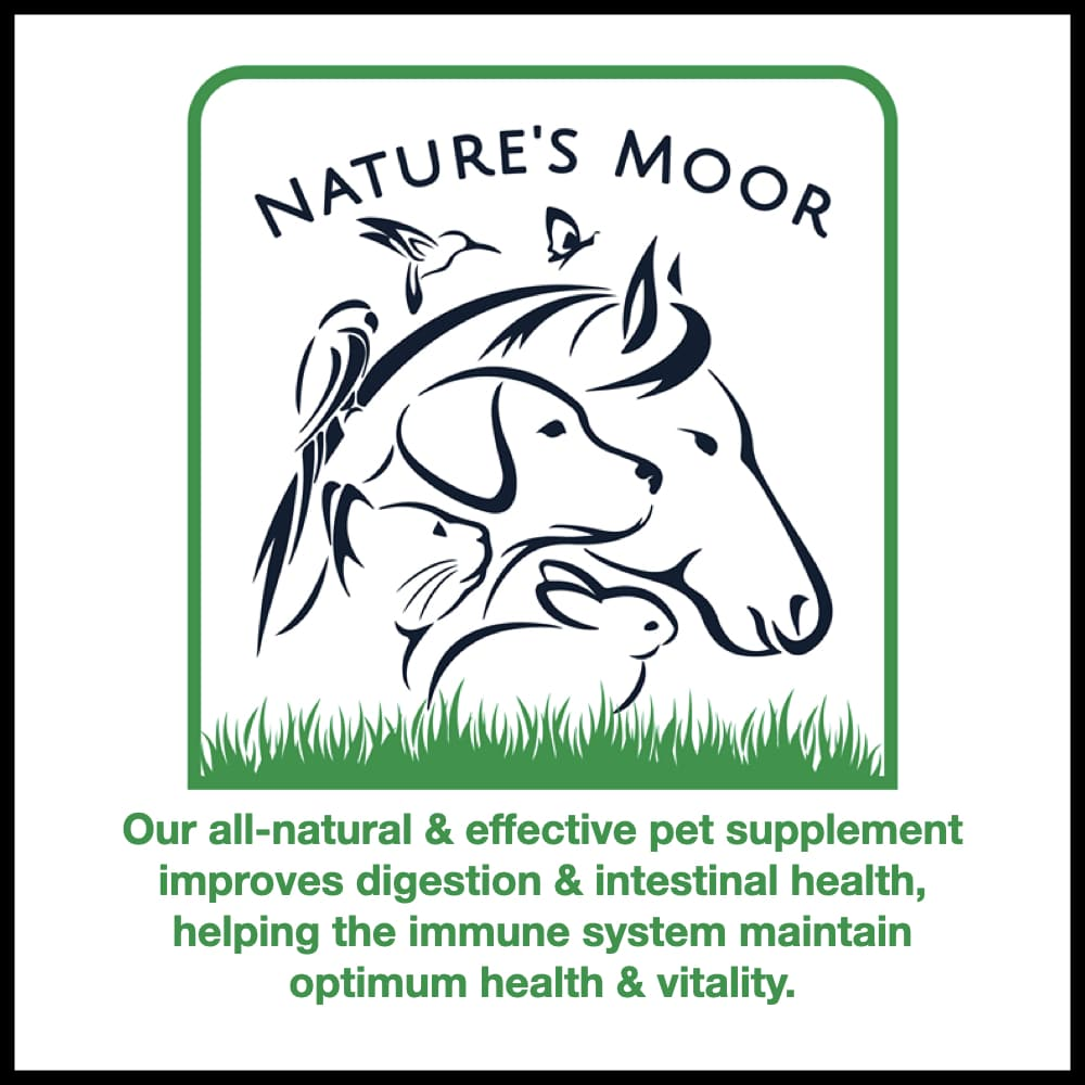 An image of a horse, bird, dog, cat rabbit and butterfly used in a logo as a sketch. This is the logo for Nature's Moor. The logo is linked to their editorial.